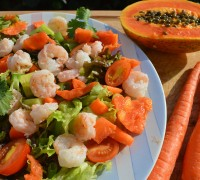 tropical-shrimp-salad-1