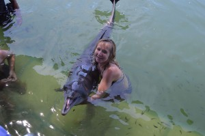 Bali Vacation - dolphin-2