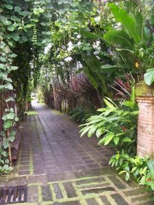 Bali Vacation hotel-6