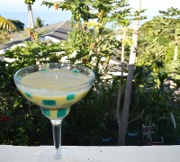 tropical-smoothies-4